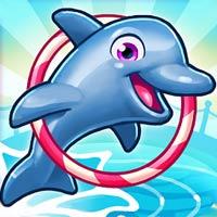 Mit delfin show 6